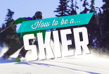 snowcomparison.com + how to be a skier