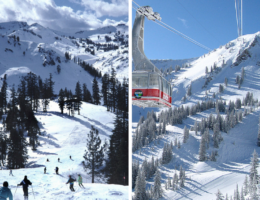 Snowcomparison.com + Squaw Valley versus Snowbird